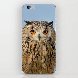 Eagle owl stare   iPhone Skin
