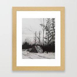 Winter Woodlot Framed Art Print