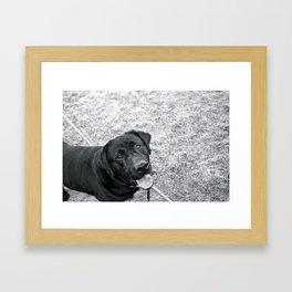 hank! Framed Art Print