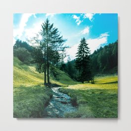 Green fields, trees and a magical brook Metal Print