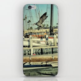 Grey Gull iPhone Skin