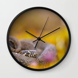 Water snake Wall Clock