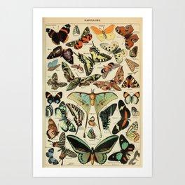 Butterfly Chart Art Print