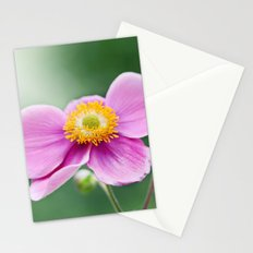 Courtesy Stationery Cards