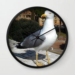 European Herring Seagull Wall Clock