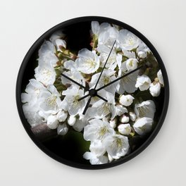blossoms on black background -04- Wall Clock