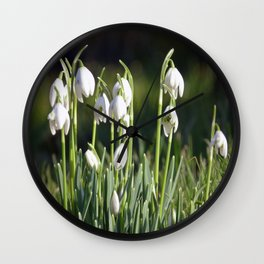 Snowdrops Wall Clock