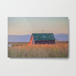 Curious Farmstead, North Dakota 5 Metal Print