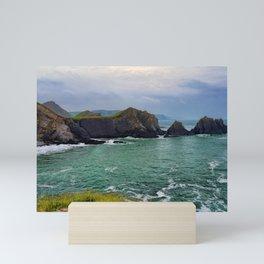 Screda Cove, Hartland Quay, Devon Mini Art Print