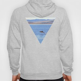 Porpoise in Pursuit Hoody