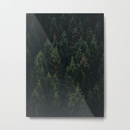 Forest of Pines Metal Print