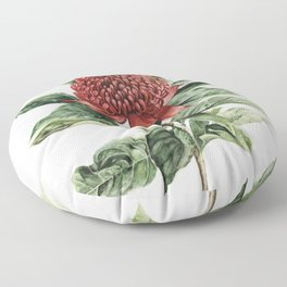 Waratah Flower Floor Pillow