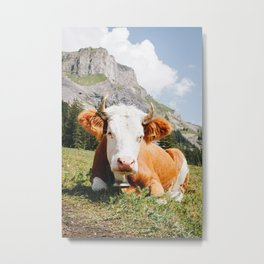 Photo of Chill Mountain Cow, in Kandersteg, Suisse/Switzerland Alps   Fine Art Travel Photography    Metal Print
