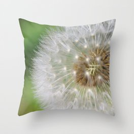 Close-up of Dandelion background Throw Pillow