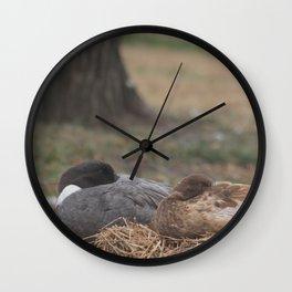 Shhh... Ducks are Sleeping Wall Clock
