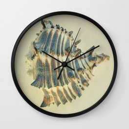 BEAUTIFUL SUBTLE BLUE SEA SHELL - 2 Wall Clock