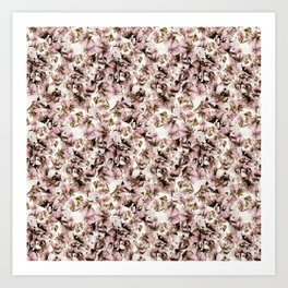 Sweet Pea Petals Photographic Pattern Art Print