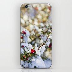 Sweet winter iPhone & iPod Skin