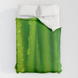 Green grass  32 Comforters