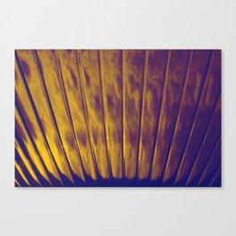 prospect002 Canvas Print