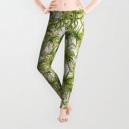 Succulent Watercolour Leggings