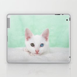 Portrait of a white kitten with heterochromia Laptop & iPad Skin