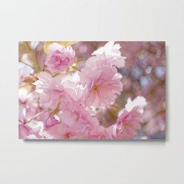 Cherry Blossom Chiffon  Metal Print