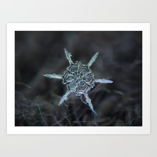 Real snowflake macro photo: The shard Art Print