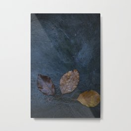Leaves by Brian Vegas Metal Print