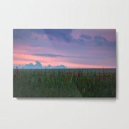 summer field Metal Print