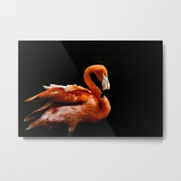 Flamingo bird Metal Print