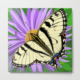 Tiger Swallowtail Butterfly on Purple Daisy Metal Print