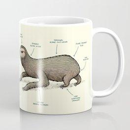 Anatomy of a Sloth Coffee Mug