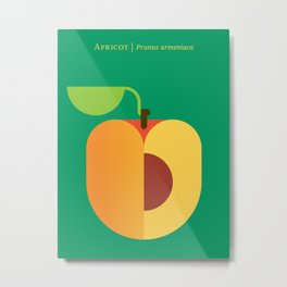 Fruit: Apricot Metal Print