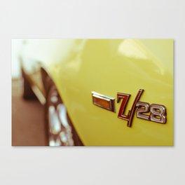 Z28 Canvas Print