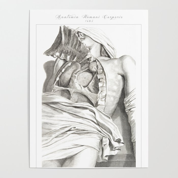 Human Anatomy Art Print Lung Aorta Heart Vintage Anatomy Doctor