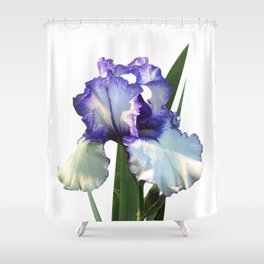 Iris 'Freedom Song' on white Shower Curtain