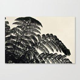 Palm Fan Canvas Print
