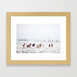 Winter Horses Gerahmter Kunstdruck