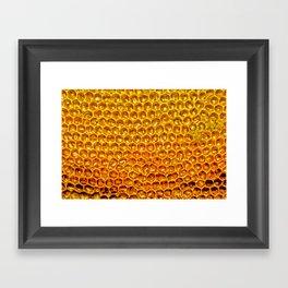 Yellow honey bees comb Framed Art Print