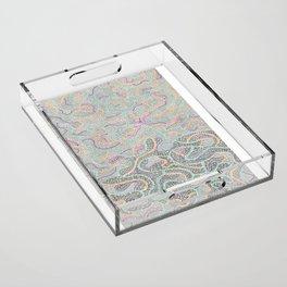 Gravity's Rainbow  Acrylic Tray