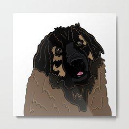 Bella the Leonberger Metal Print