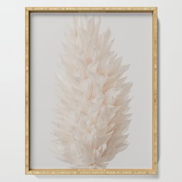 Botanical Dried Bunny Tails Grass Serving Tray