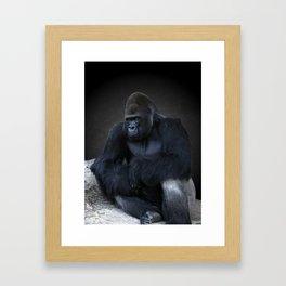 Portrait Of A Male Gorilla Framed Art Print