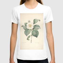 camellis japonica, 3 Redoute Roses 4 T-shirt