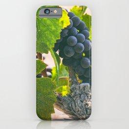 Ripen 2 iPhone Case