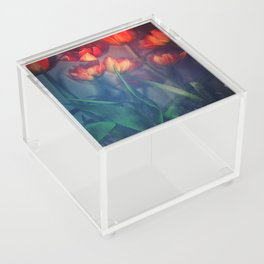 Orange Tulips Acrylic Box