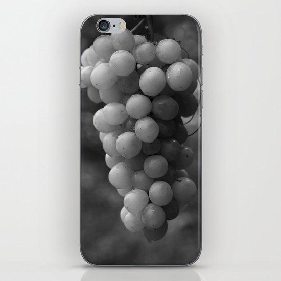 Harvest time - B&W 8508 iPhone & iPod Skin