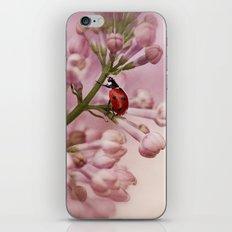 Ladybird on Lilacs iPhone & iPod Skin