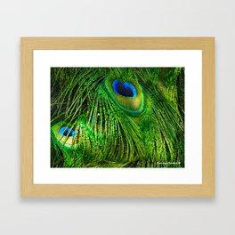 Peacock Glitter Framed Art Print